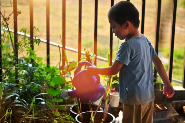 Make gardening educational with your children